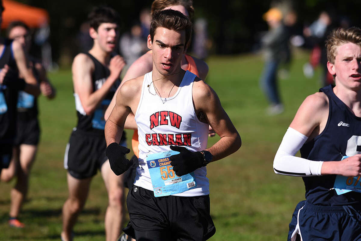 New Canaan's Alessandro Malagoli in action during the FCIAC boys cross country championship race on Oct. 18. - Dave Stewart photo
