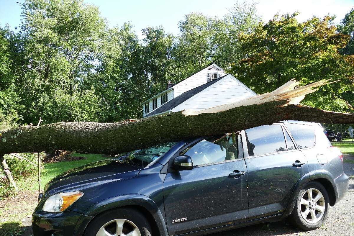 A tree limb atop the Ashleys' car Wednesday after the tornado stuck the Conrad Road area Tuesday night. - Grace Duffield photo