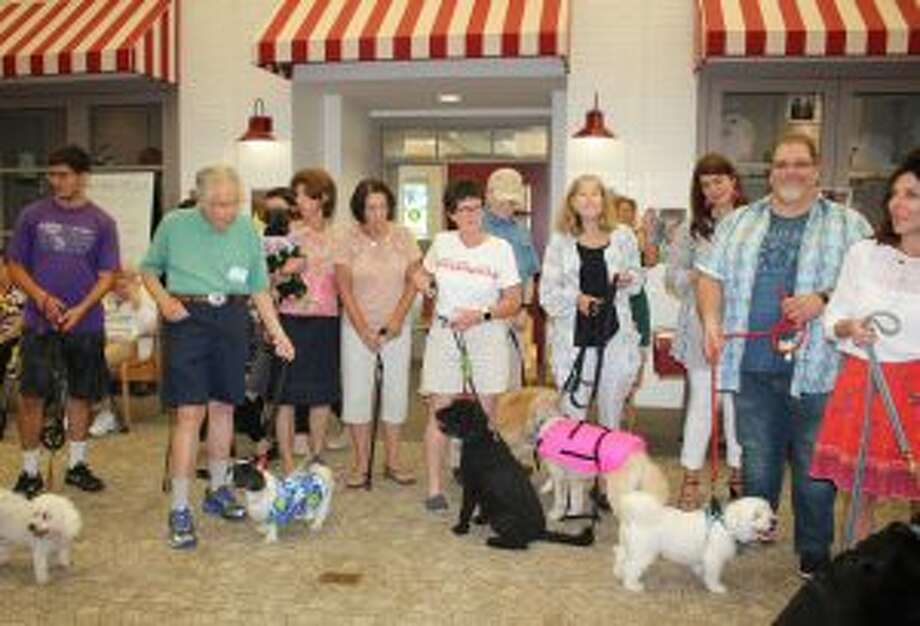 Many breeds of dogs stepped out in the Waveny dog parade.