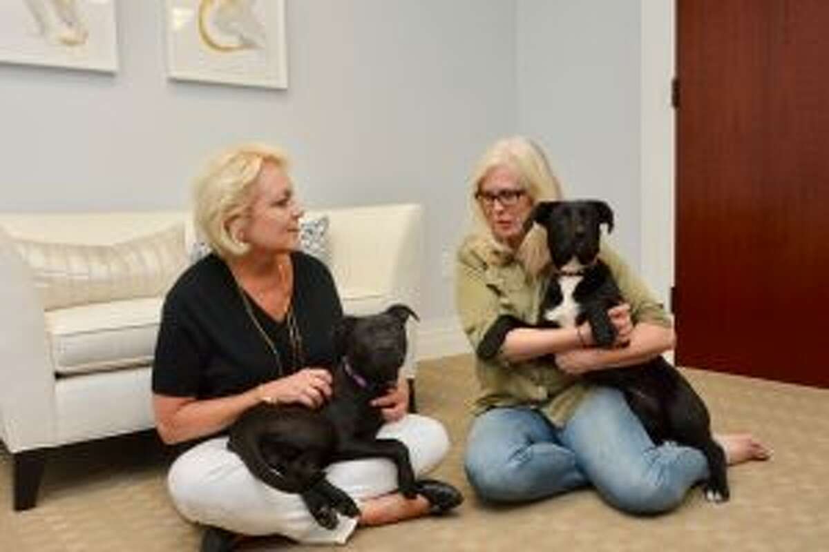 Bankwell, which has two locations in New Canaan have adopted rescued dogs. From left, Laura Waitz with Gracie; Alison Gruseke with George Eliot. - Contributed photo