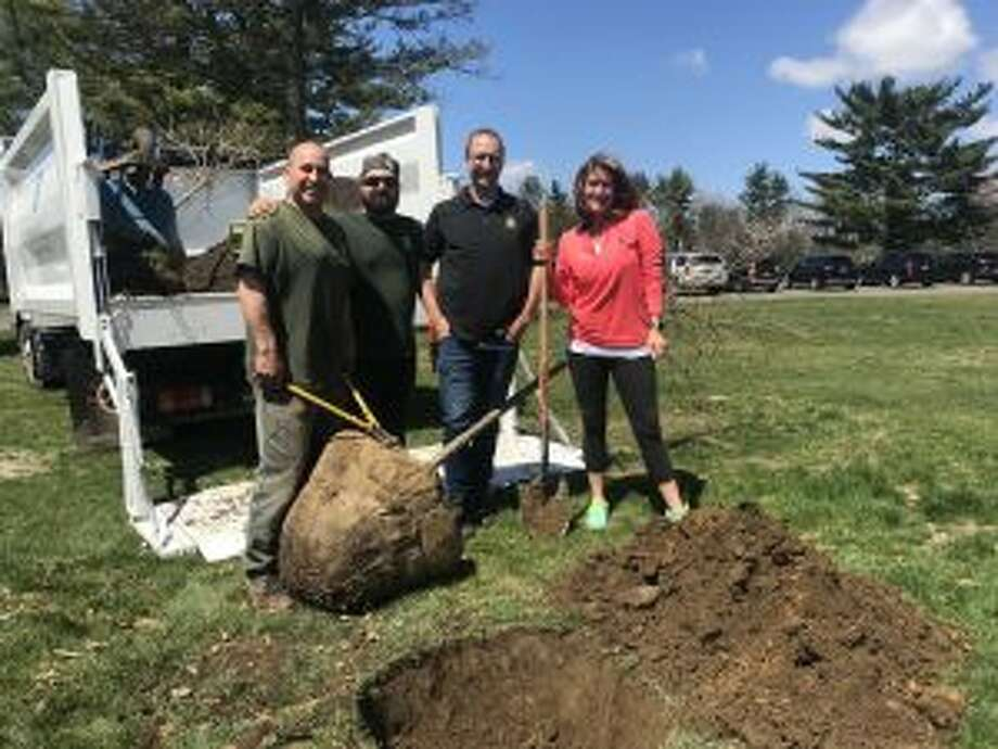 A White Oak tree has been planted at Irwin Park in New Canaan in honor of Arbor Day. From left, Erick Valenzuela, Charles Yvon, and Isaac Taylor of Almstead Tree and Shrub Co., and Muffy Lewis of New Canaan Garden Club. — Photo by Kate Burt