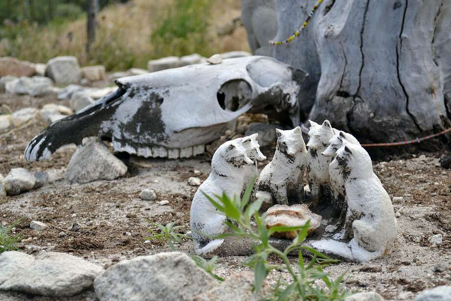 """Figurines and an animal skull inside the """"medicine wheel"""" at Wolf Connection. Photo: Gregory Thomas"""