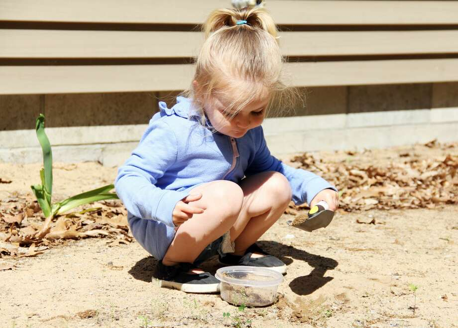 A young nature enthusiast was spotted digging through the dirt at the Huron Nature Center on Saturday during the Life In a Bucket of Soil event. Photo: Andrew Mullin/Huron Daily Tribune