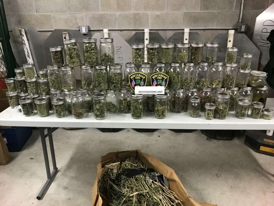 New Canaan Police say they seized five pounds of marijuana after officers spotted a growing operation at a Tobys Lane residence after a domestic on April 30. Michael Leeds, 49, faces charges.