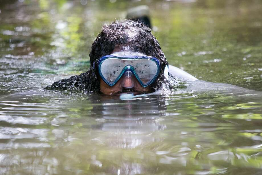 Drew Costley went snorkeling in Sausal Creek in search of fish in Oakland, Calif. on June 24th, 2019. Photo: Douglas Zimmerman/SFGate.com