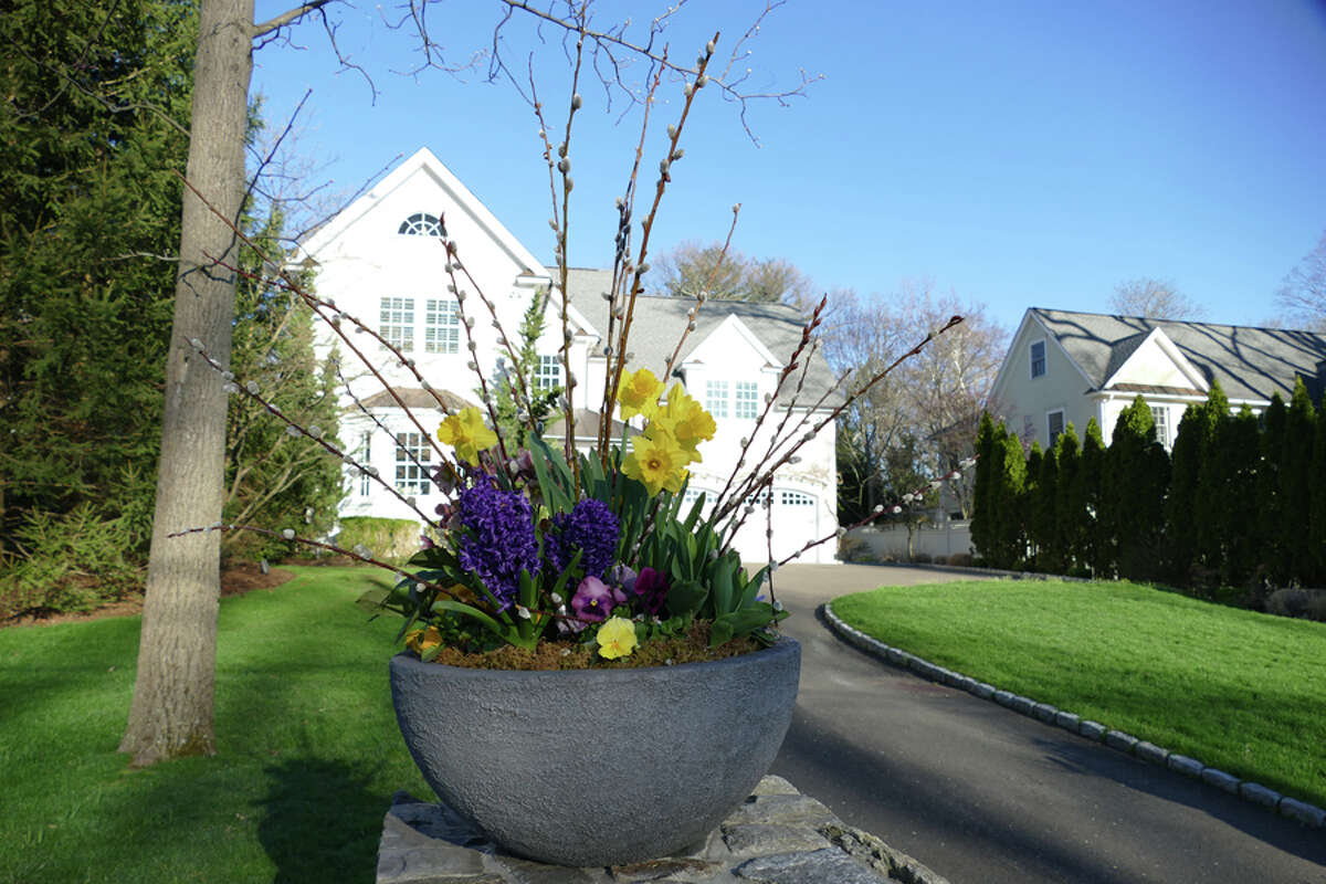 New Canaan welcomes spring around town with views such as a beautiful planter with flowers. - Grace Duffield / Hearst Connecticut Media