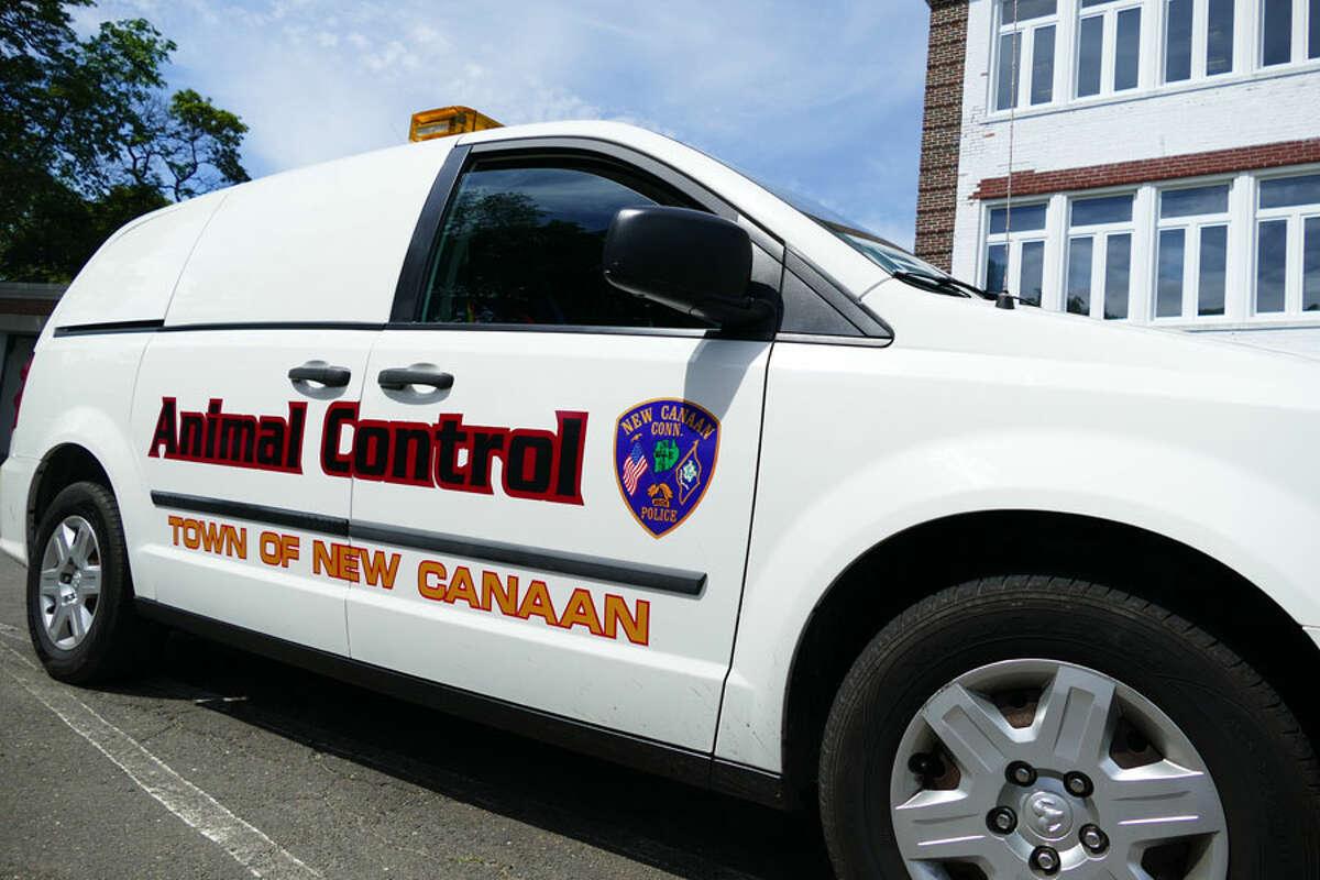 New Canaan Animal Control van