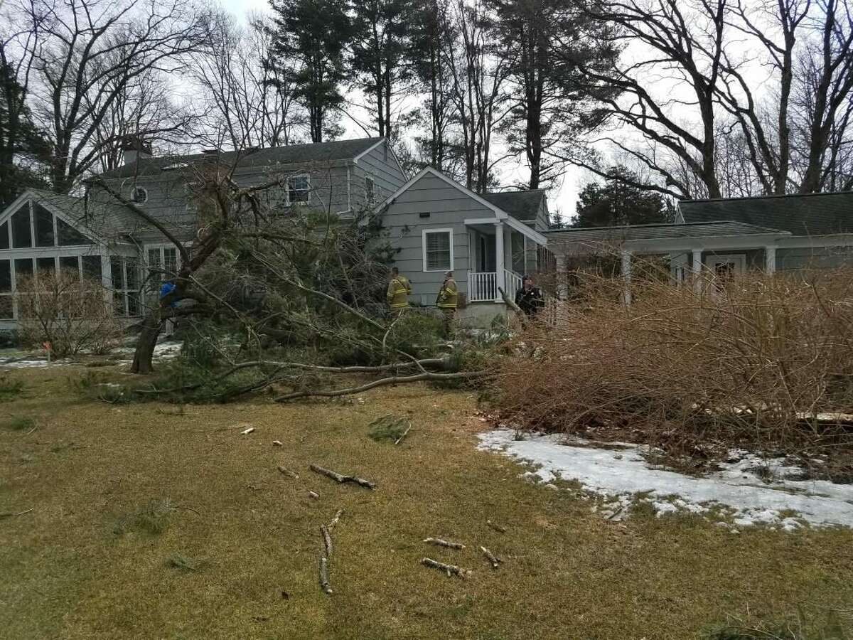 The top of a large pine tree, snapped off by high winds, fell onto a house on Norholt Drive Monday afternoon, Feb. 25. No injuries were reported. -New Canaan Fire Department Photo