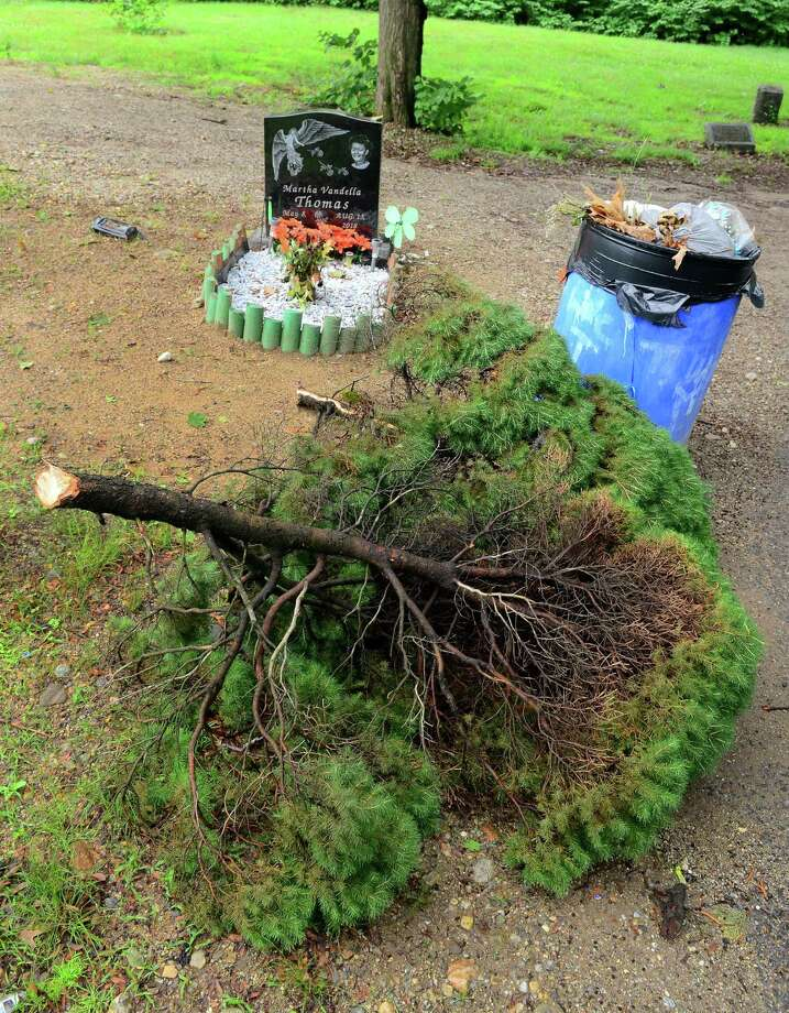 A trash can and cut tree rest near a lone head stone at Park Cemetery in Bridgeport, Conn., on Tuesday June 25, 2019. Photo: Christian Abraham / Hearst Connecticut Media / Connecticut Post