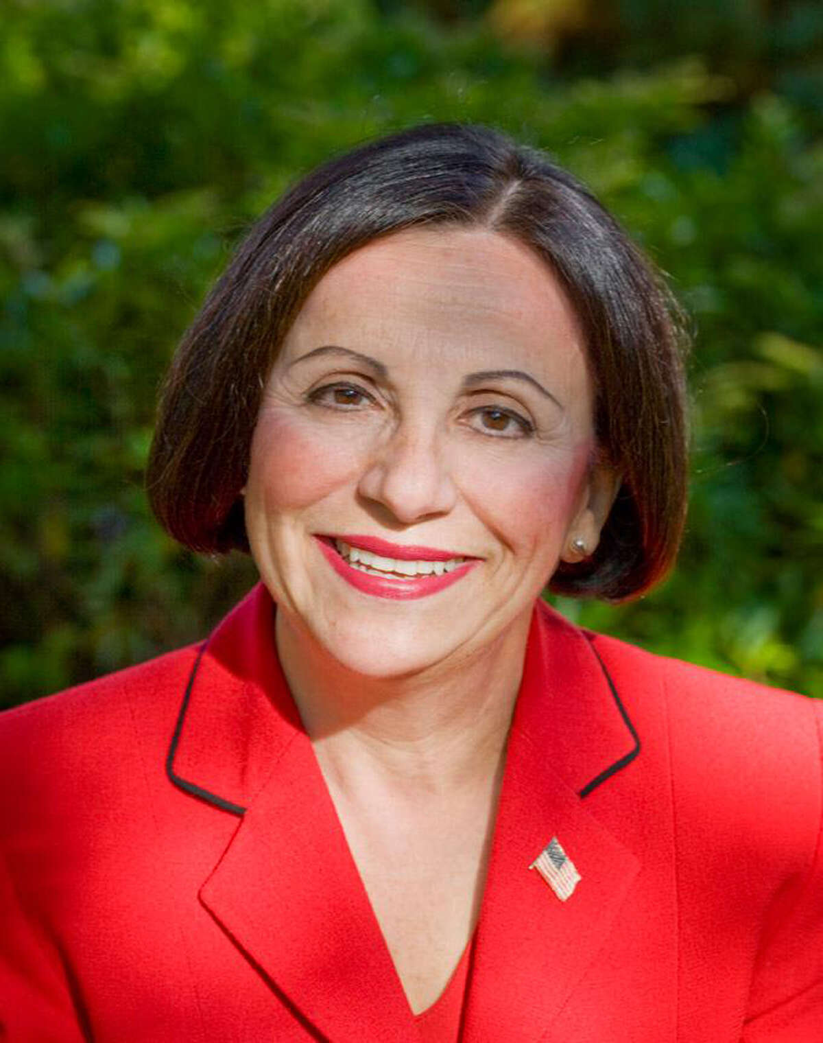 Toni Boucher is a CT businesswoman and former state senator, state representative, transportation committee co-chair, state board of education member, selectman and board of education chair. Contributed photo