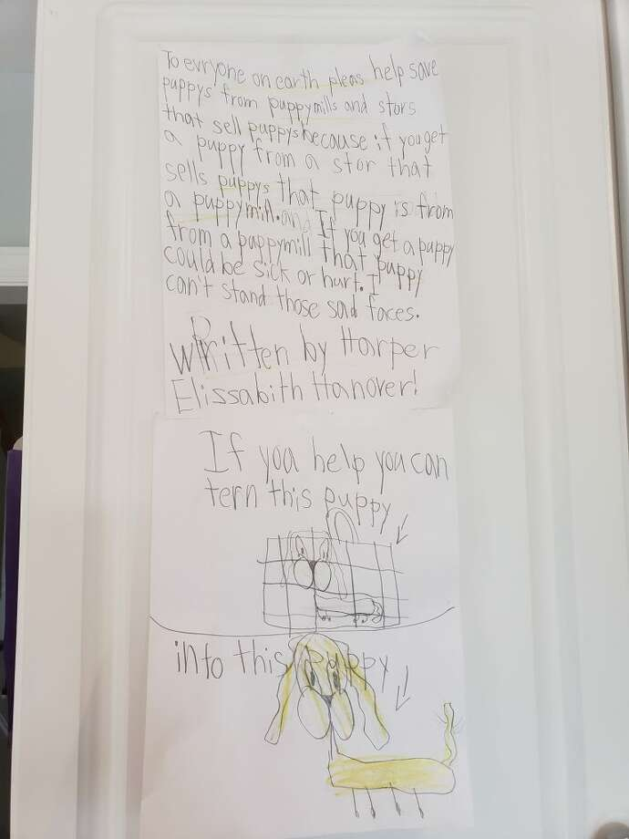 Harper Elizabeth Hanover penned this hand-written letter and submitted it to The Press.