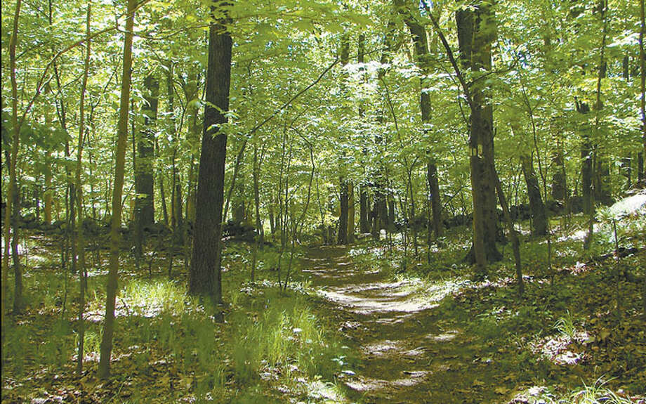 Weir Farm will mark National Trails Day on Saturday, June 2, with a guided hike from 10 to noon. The three-mile hike will cover the natural history of the area and how people historically used the land.