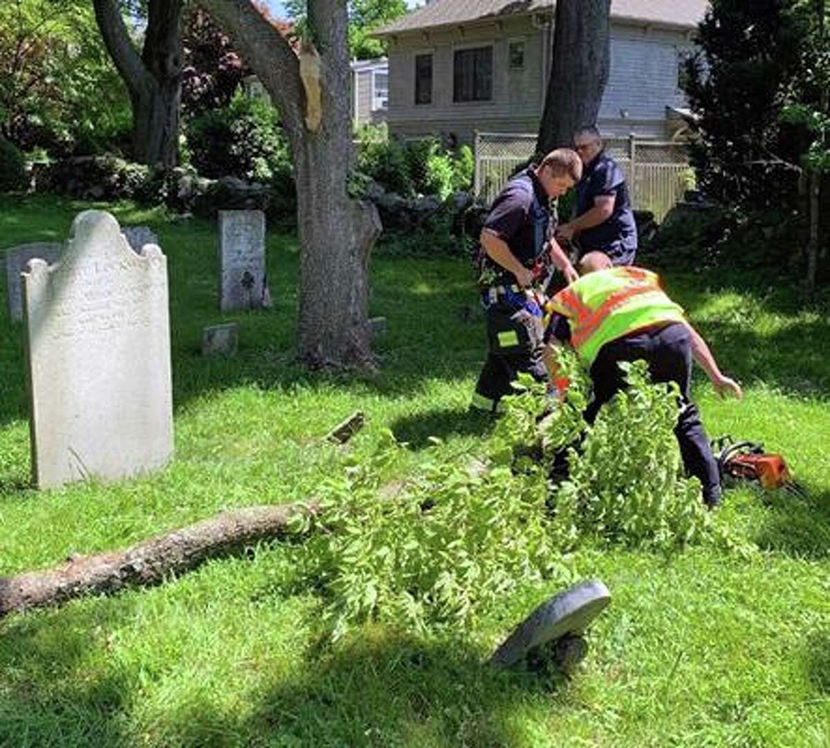 The Greenwich, Conn., Fire Department's Engine 5 crew cut up and removed a tree limb from Tomac Burial Ground.