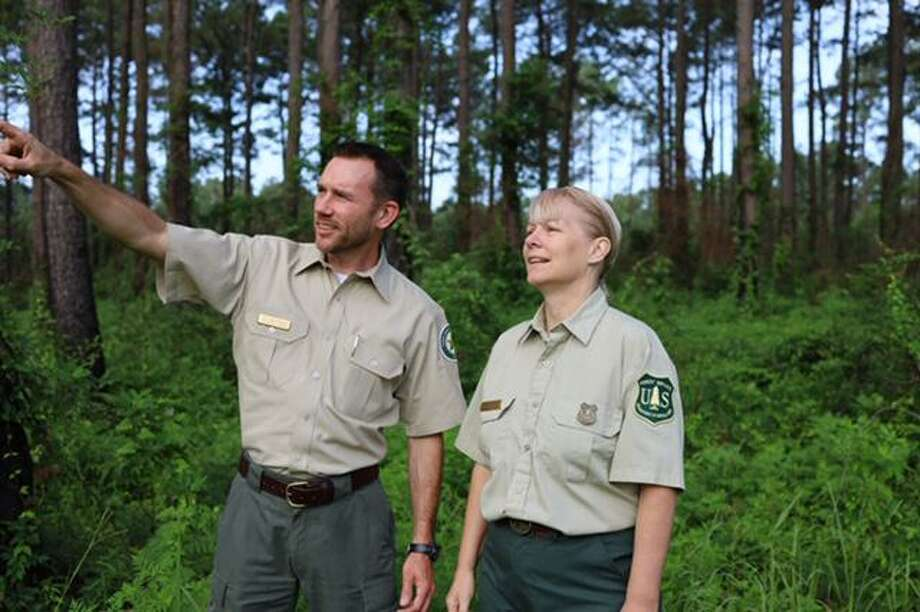 Wes Moorehead, Texas A& Forest Service East Texas Operations Department Head, and Kristi Keach, USDA Forest Service Timber Resource Specialist, survey a timber stand at the Sabine National Forest on June 24, 2019. Photo: Texas A&M University