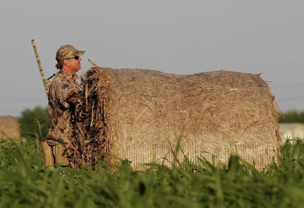 """The 2019-20 """"drawn hunts"""" portion of Texas' annual public hunting program, which opens the first week of July, will continue offering popular premium dove hunts run by private outfitters."""