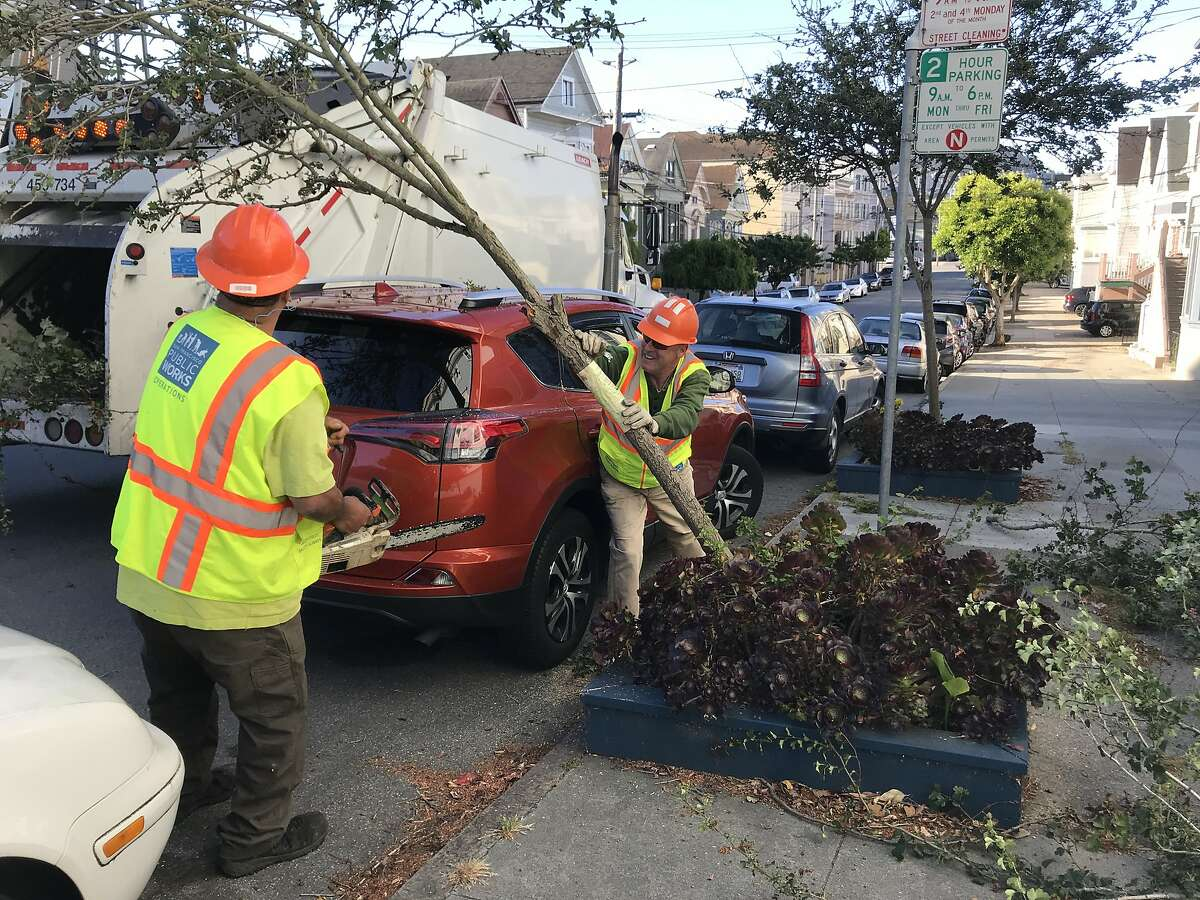 San Francisco Department of Public Works employees Nili Niu, left and Robert Jenkins, right, remove Hawthorne trees near the intersection of Fourth Avenue and Lake Street on Wednesday, June 26, 2019.