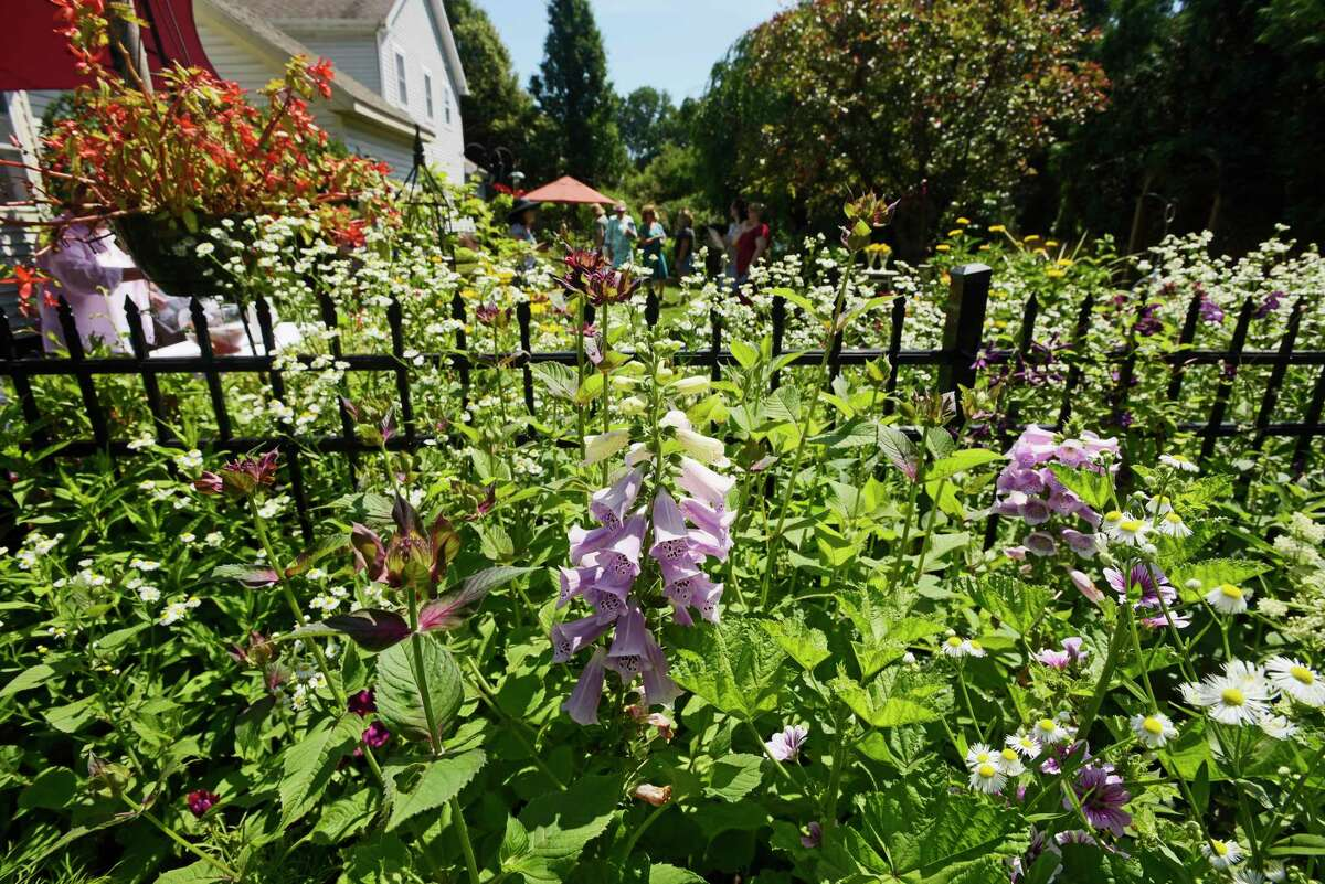 Visitors look over the garden at the home of Tas Steiner as part of the 24th annual Secret Gardens Tour on Sunday, July 8, 2018, in Saratoga Springs, N.Y. The yearly event is presented by Soroptimist of Saratoga County and is a major fund-raiser to support local and global initiatives that benefit women, girls and the community. Steiner, who has had the garden for five years, says that he begins working on it in April and spends between seven and eight hours a week working to weed, feed and cut back flowers and plants in the garden. (Paul Buckowski/Times Union)