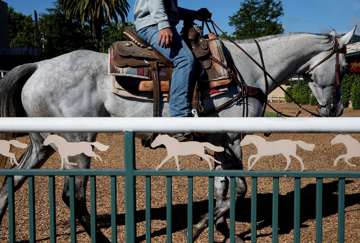 Track supervisors watch as horses are worked out early in the morning before a day of races on the dirt track at the Alameda County Fairgrounds in Pleasanton, Calif. Thursday, June 27, 2019.