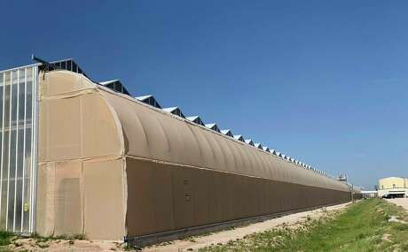 Village Farms operates massive greenhouses in Monahans, Fort Davis and Marfa.