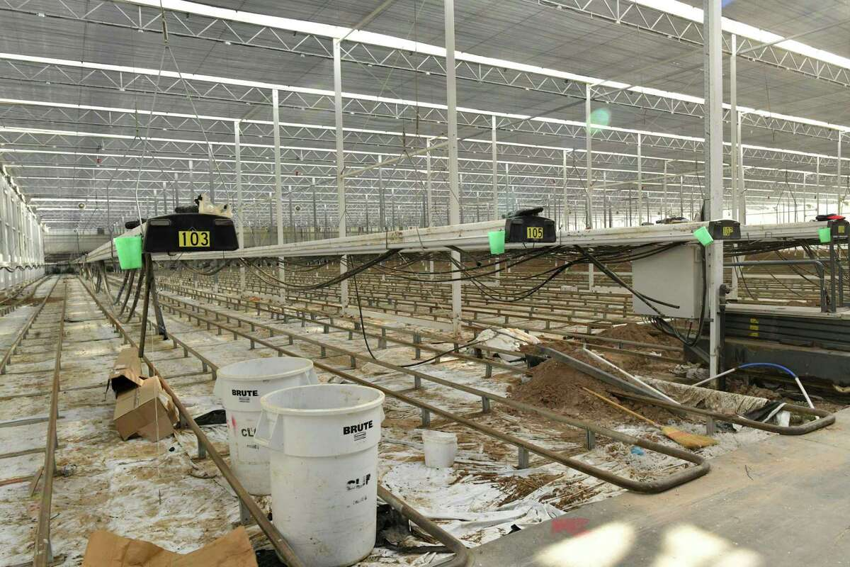 To prepare for hemp production, Village Farms has started to convert this greenhouse in Monahans.
