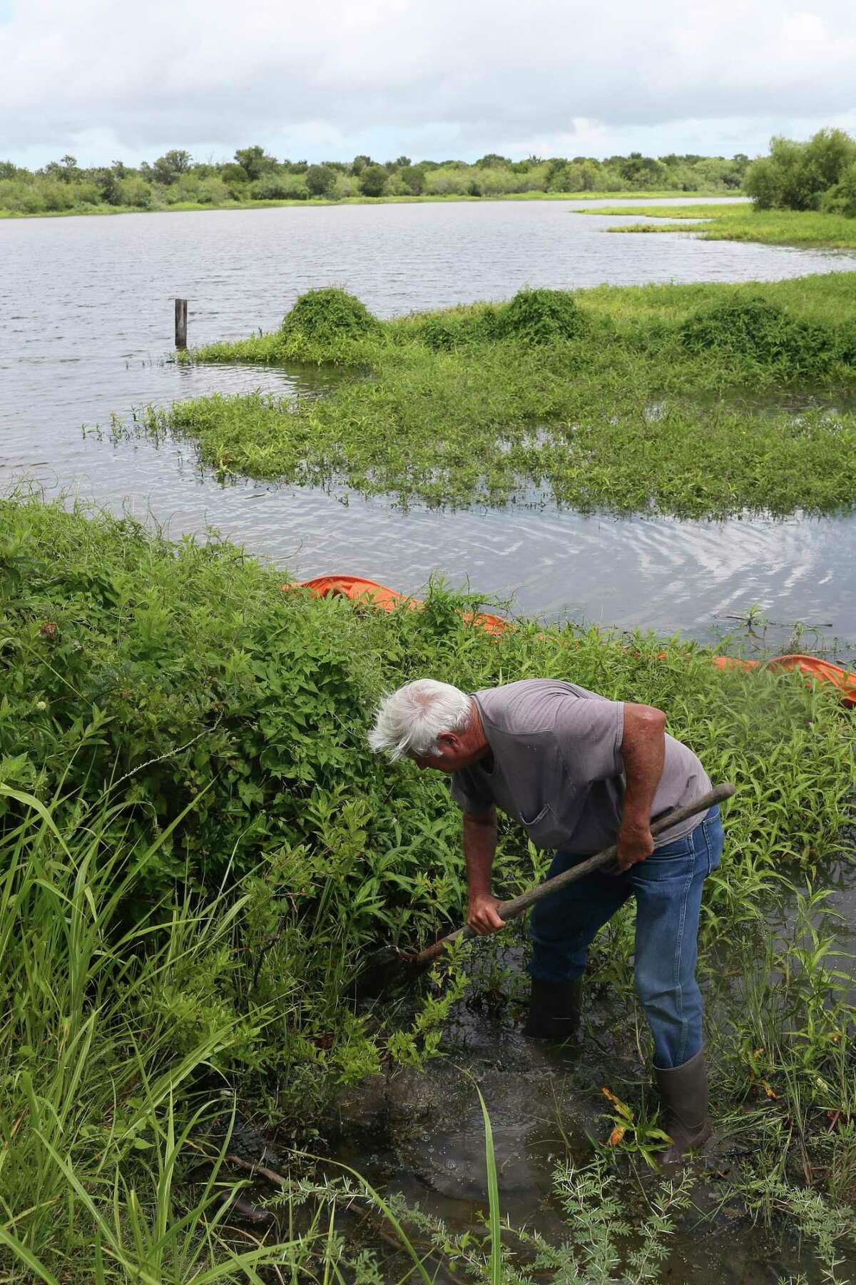 Ronnie Hamrick, 63, searches for plastics pellets in the mud of Cox Creek in Point Comfort across the bay from Port Lavaca, Texas, Wednesday, June 28, 2017.