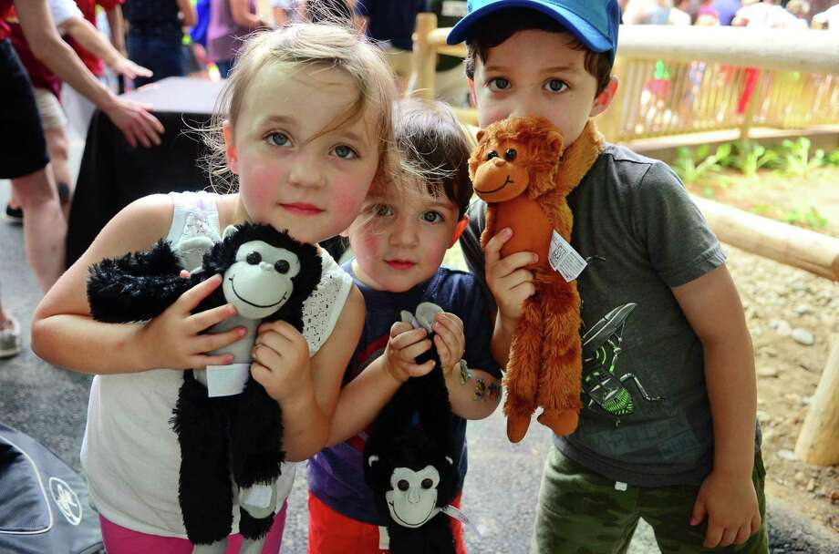 Louisa Voisine, 3, of Fairfield, at left, and her brothers Abraham, 2, and Charles, 5, right, show off tow spider monkey dolls that they got for free at the entrance as two Black-Handed Spider Monkeys were celebrated as the newest residents at Beardsley Zoo in Bridgeport, Conn., on Saturday June 29, 2019. The male Spider monkey born in 2014 named Gilligan and a female Spider monkey born in 2000 named TT (Short for Tina Turner), have joined the zoo from the Henry Doorly Zoo and Aquarium in Omaha, Neb. Photo: Christian Abraham / Hearst Connecticut Media / Connecticut Post