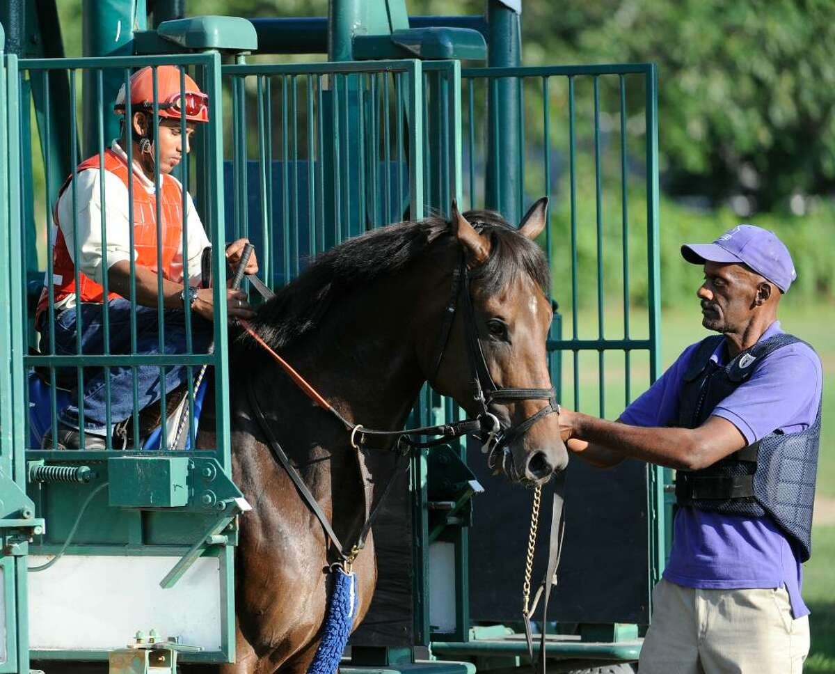 Afleet Express gets training in the starting gate. (Skip Dickstein / Times Union)