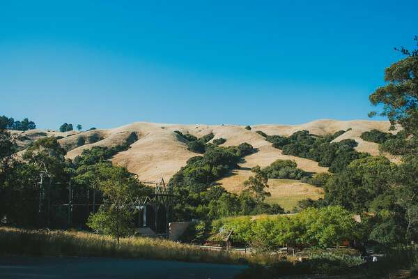 Cal Shakes' Bruns Amphitheater is nestled in the Orinda hills.