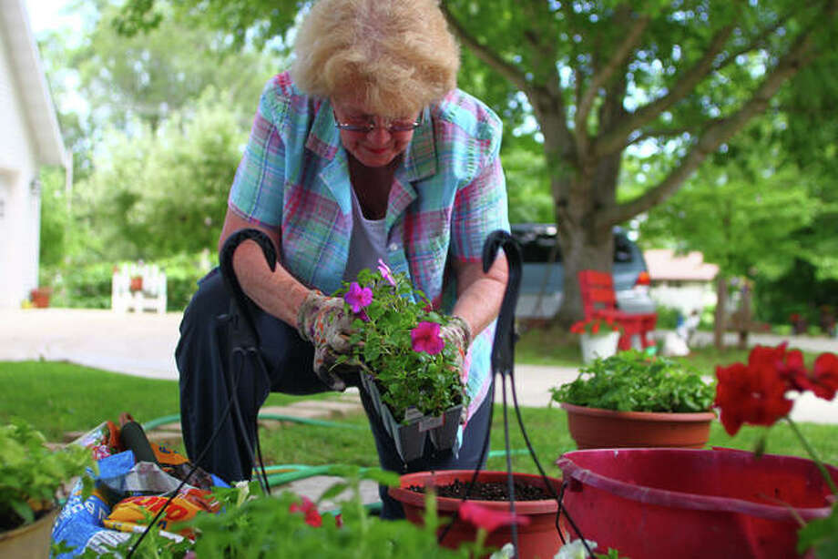 Retha Anders braves the heat Monday to plant flowers at her home in Winchester. She recently had gone to buy a couple more plants and returned home with more than she had planned, she said. Photo: Rosalind Essig | Journal-Courier