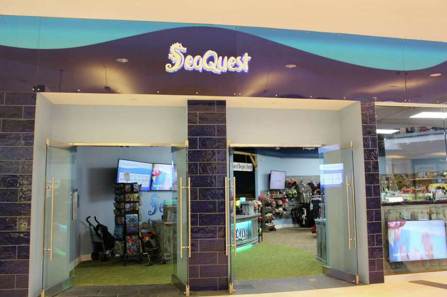 SeaQuest Interactive Aquarium is open in the Westfield Trumbull mall Photo: Jordan Grice / Hearst Connecticut Media / Connecticut Post