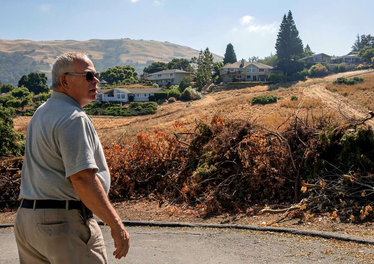 Jackson Oaks Homeowner's Association President Jim Realini walks past piles of dried brush collected and cleared as part of the FireWise program in Morgan Hill, Calif. Wednesday, July 3, 2019.