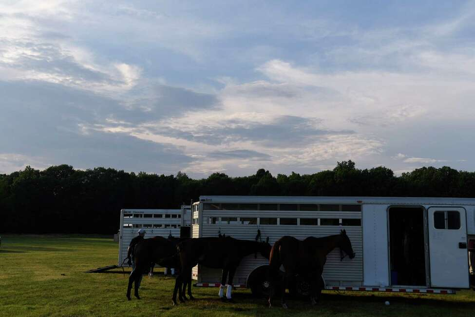 Polo horses sit tied to a trailer during the season opening match at Saratoga Polo Club on July 5, 2019 in Greenfield. (Jenn March, Special to the Times Union )