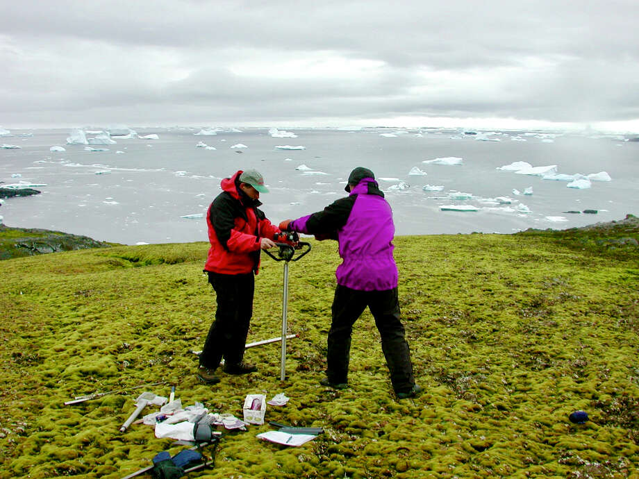 Peter Convey, an ecologist with the British Antarctic Survey, takes samples of moss with his research team in Antarctica. Photo: P. Boelen/BAS / P. Boelen/BAS