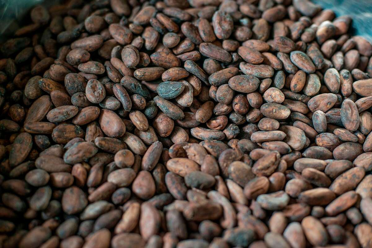 (FILES) This file photo taken on June 18, 2019 shows details of some roasted cocoa beans at Moments Chocolate workplace in Accra. - After the roasting process, husks are removed keeping only the nibs. Nibs are roasted and ground to start the complex process of making chocolate. In Ghana there are around 50 small chocolate producers, trying to compete in a market to recognise Ghana not only as cocoa exporter but also as a chocolate producer. (Photo by CRISTINA ALDEHUELA / AFP)CRISTINA ALDEHUELA/AFP/Getty Images