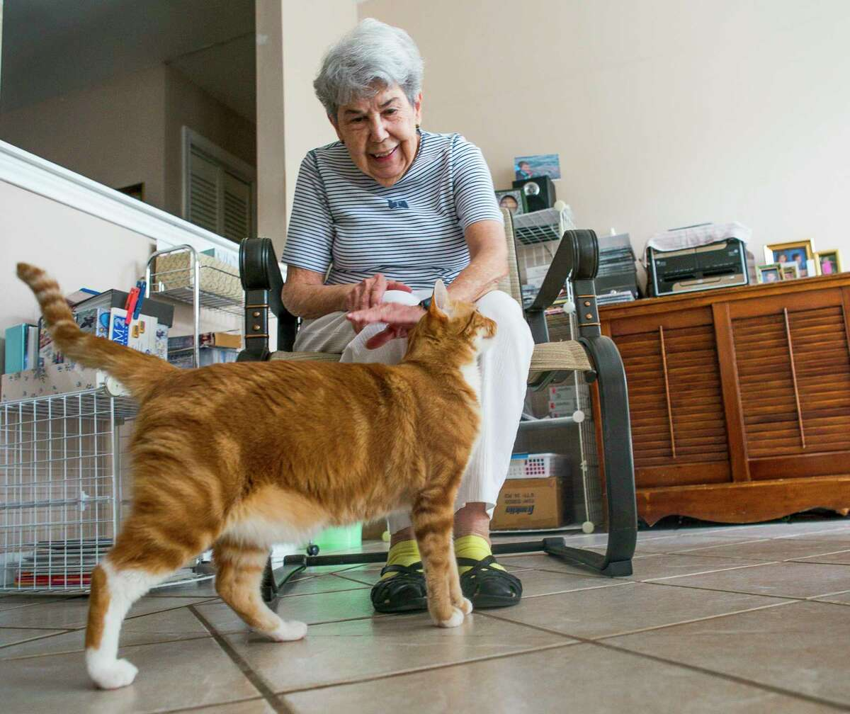 Dolores Alvarez regularly speaks with her cats in both English and Spanish at her home in Houston, Monday, July 1, 2019. Alvarez has been helping foster and rescue cats with the organization Homeless & Orphaned Pets Endeavor (HOPE) over most of her 20 years living in Houston. Her cat Jake is one of her most affectionate rescues.