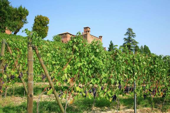 The earth beneath the vines in Barolo and Barbaresco ranks among the most expensive agricultural real estate on the planet, rivaling Burgundy, Bordeaux and Napa Valley.