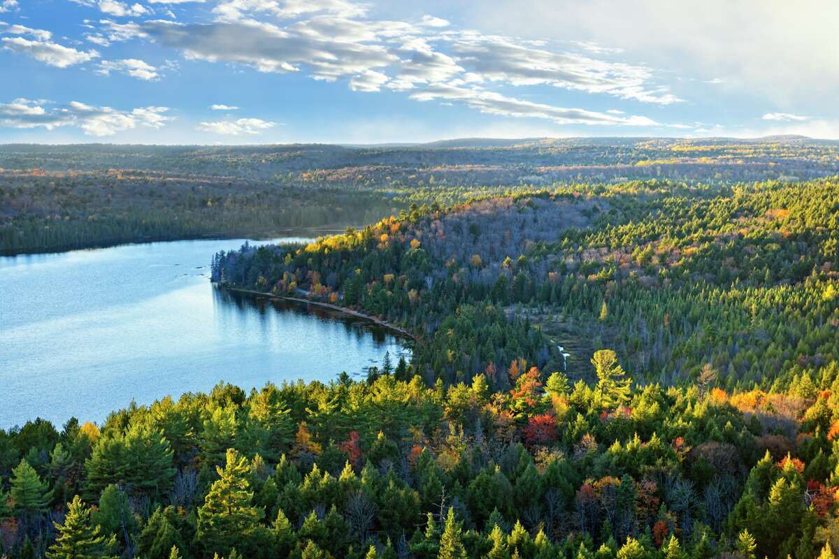 Canada's boreal forest serves as an important check against climate change. Twenty-two million acres of trees - an area the size of Pennsylvania -have been clear-cut to make virgin pulp, the key ingredient in premium toilet paper, according to a recent report by the Natural Resources Defense Council (NRDC) and Stand.earth.