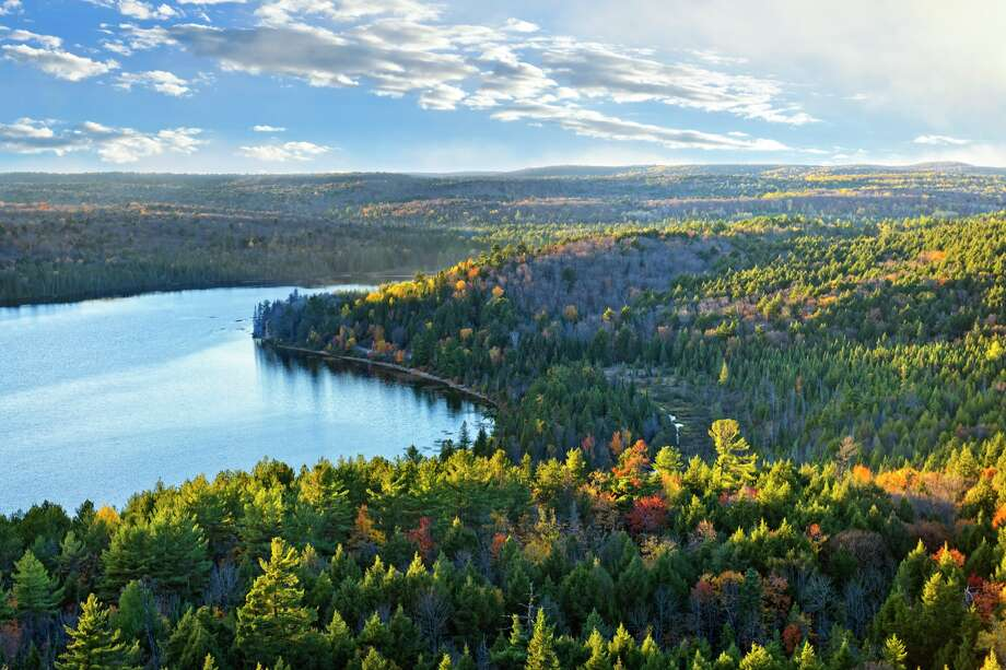 Canada's boreal forest serves as an important check against climate change. Twenty-two million acres of trees — an area the size of Pennsylvania —have been clear-cut to make virgin pulp, the key ingredient in premium toilet paper, according to a recent report by the Natural Resources Defense Council (NRDC) and Stand.earth. Photo: Elena Elisseeva/Getty Images/iStockphoto