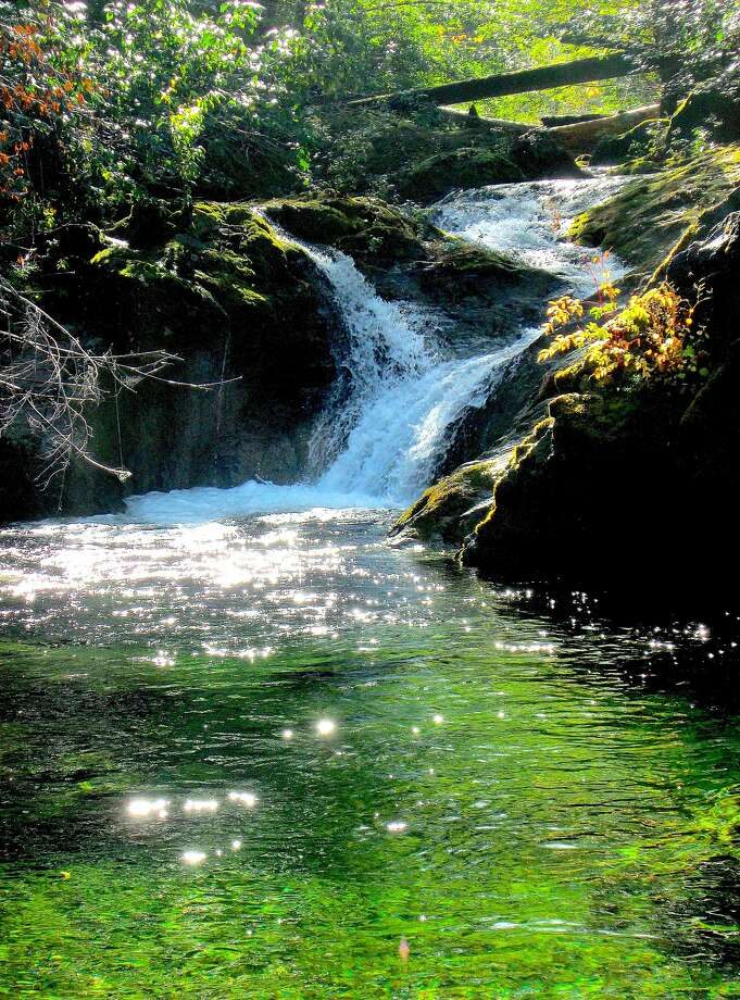 A 1.5-mile walk on the remote South Kelsey Trail leads to Buck Creek with a waterfall and a swimming hole near its confluence with the South Fork Smith River. Photo: Tom Stienstra / The Chronicle
