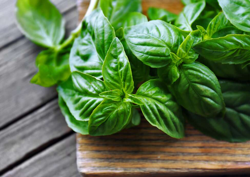 New York health officials are advising residents not to eat fresh basil imported from Siga Logistics in Mexico because of a possible link to food-borne illness in the Albany area and in other states.