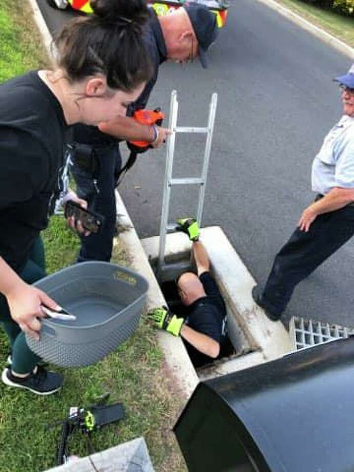 Members of Middletown's South Fire District, including Lt. Russ Jacobs and firefighters Glen Harvey and Steve Tyrseck, rescued five baby ducklings this week from a storm drain on Millbrook Road. Photo: Contributed Photo