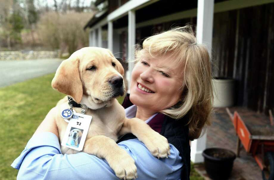 Lorraine Trapani will discuss the work of Guiding Eyes for the Blind with the New Canaan Men's Club Friday, July 12, at 10:30 a.m. at St. Mark's Church. TJ Wrinkles and Trainer Lorraine. Photo: Contributed Photo / Darryl J Bautista / Feature Photo Service / (C) 2017 Darryl J Bautista/Feature Photo Service