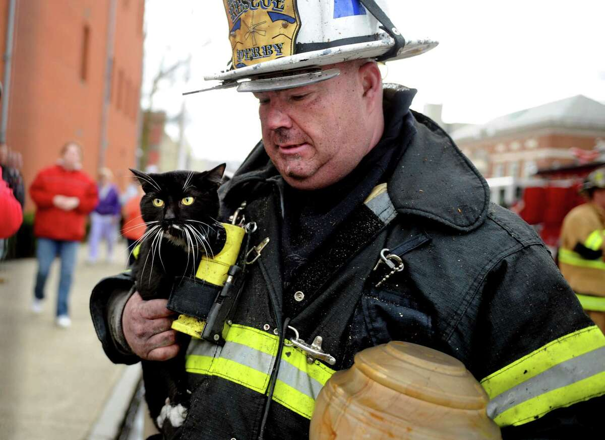 Louis Oliwa, assistant chief of the Storm Ambulance Corps, carries a cat and urn rescued from an apartment fire on Olivia Street in Derby Thursday, Mar. 29, 2012.
