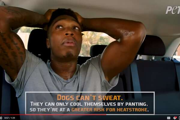 """In the clip, Walker's friend and his beloved dog Zola tell the Spur they'll be """"quick"""" before leaving him in the car with the the windows barely rolled down. As the friend and Zola do some shopping, Walker sits in the sweltering vehicle, sweating profusely, gasping for air, getting dizzy and shouting for help through the cracked window."""