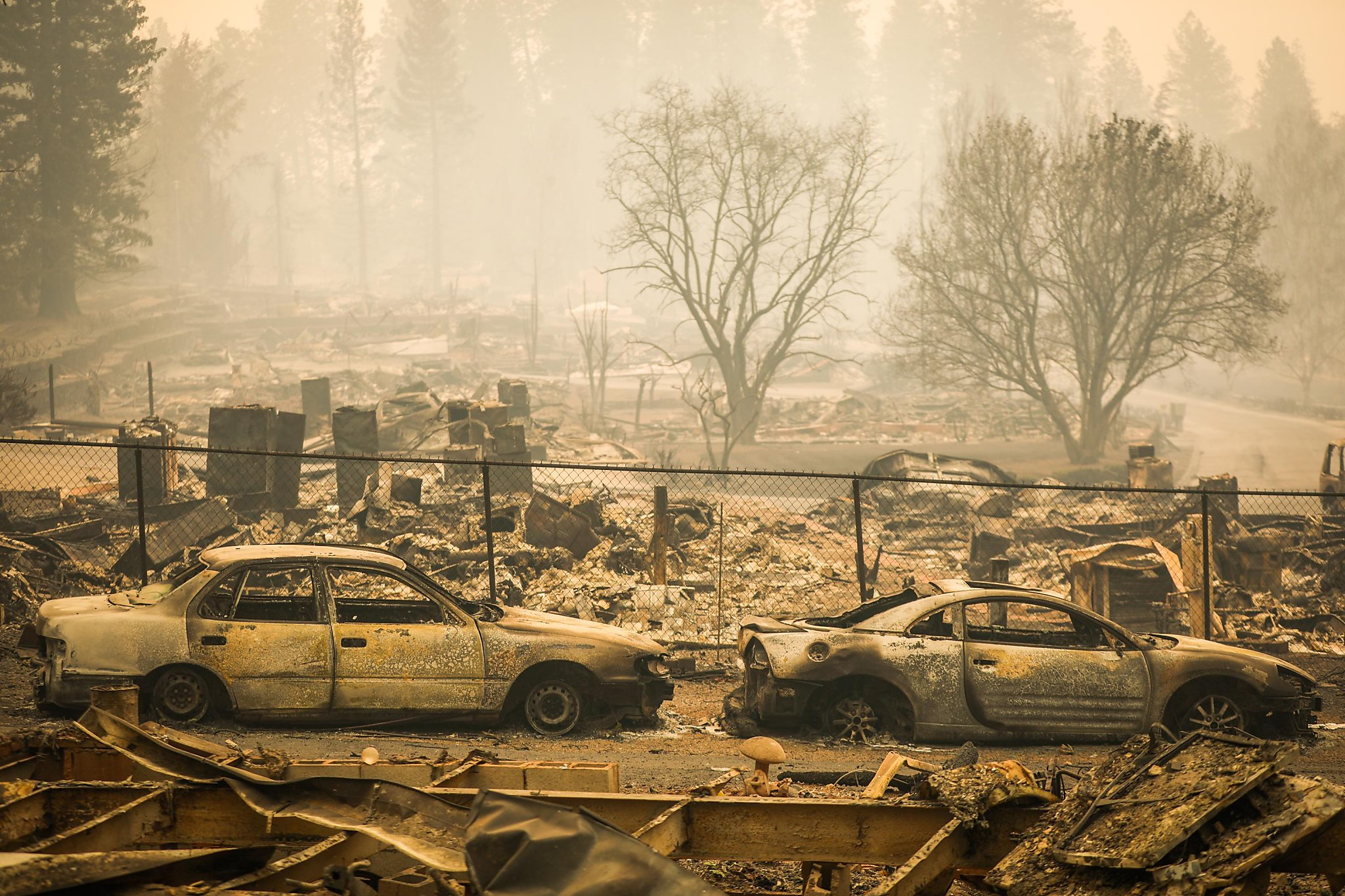 support camp fire victims - HD2048×1365