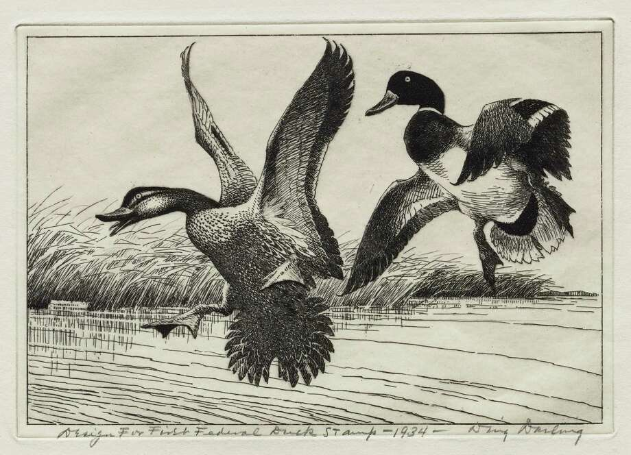 "Duck hunters, birders, waterfowl and nature lovers are in for a treat as the Stark Museum of Art in Orange presents ""Conservation Art: Federal Duck Stamps and Prints."" This exhibit features the Federal Migratory Bird Hunting and Conservation stamps from 1934 through 2001. Photo: Courtesy Photos / Courtesy Photo"