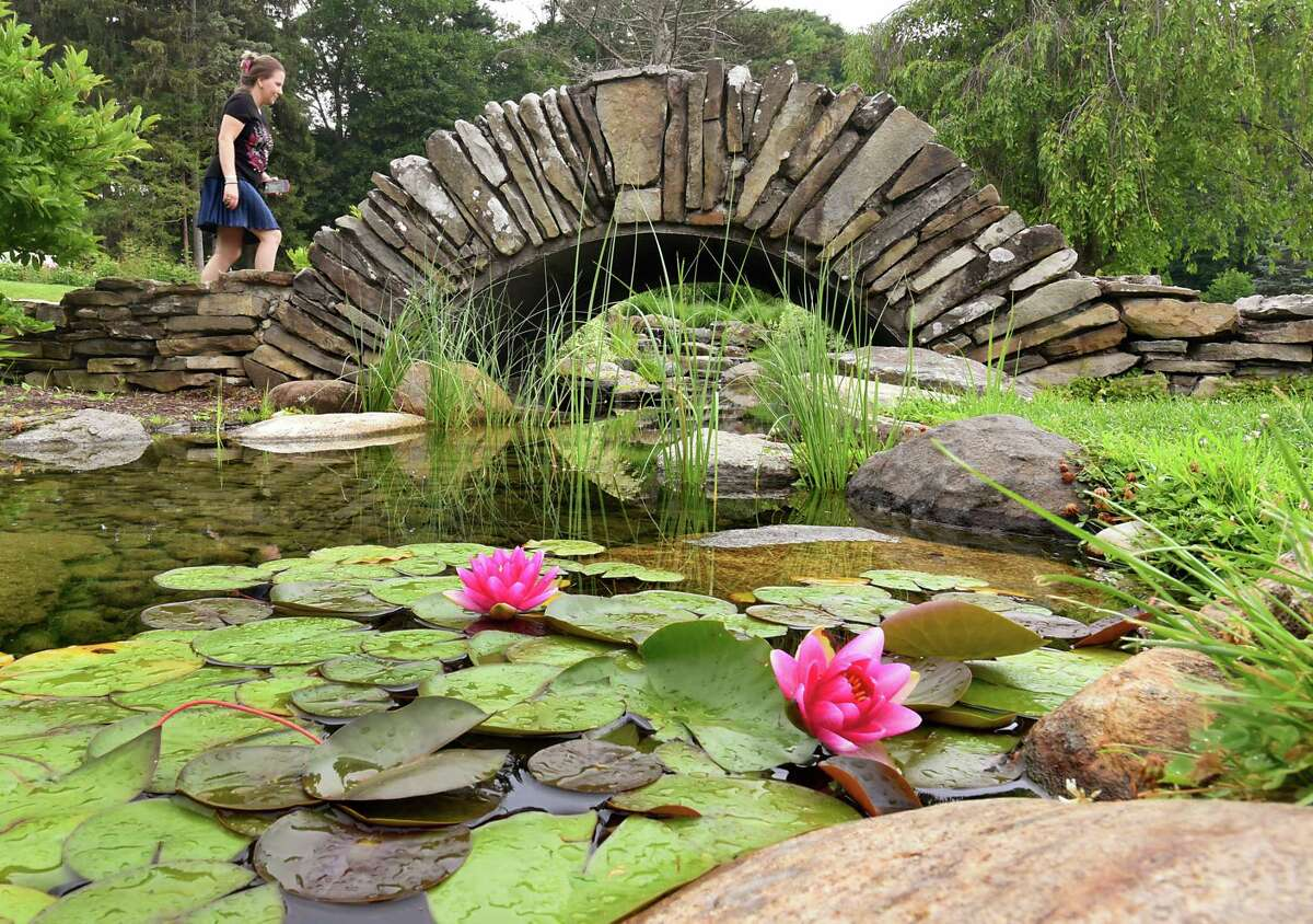 Water lilies are seen in front of a stone bridge where Mina Evtimova of Albany crosses in the Central Park Rose Garden on Thursday, July 11, 2019 in Schenectady, N.Y. (Lori Van Buren/Times Union)