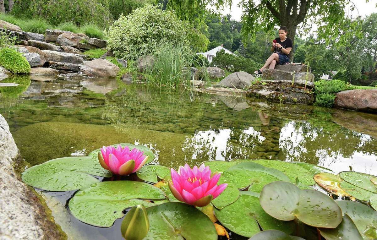 Mina Evtimova of Albany checks photos she just took of water lilies before reading a book under a tree in the Central Park Rose Garden on Thursday, July 11, 2019 in Schenectady, N.Y. (Lori Van Buren/Times Union)