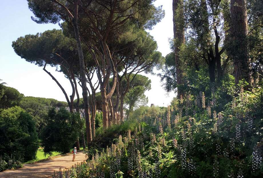 The eastern slope of Rome's Palatine hill, which is distinguished by unexpected greenery. Photo: Photo For The Washington Post By Anne Calcagno / Anne Calcagno