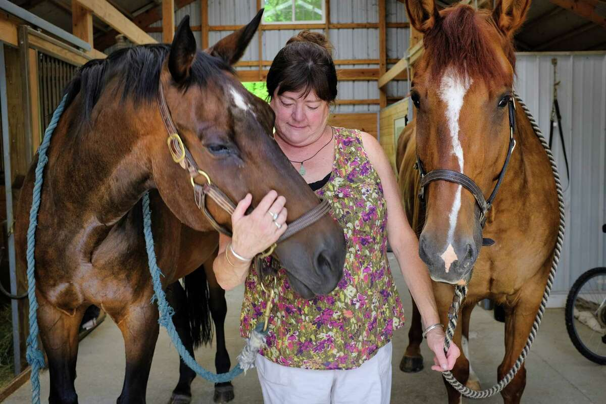 Sue Tanner with her two horses, Charlie, left, and Doc inside the barn on her property on Wednesday, July 10, 2019, in Chatham, N.Y. (Paul Buckowski/Times Union)